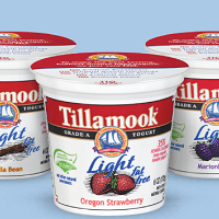 Tillamook-Light-Yogurt